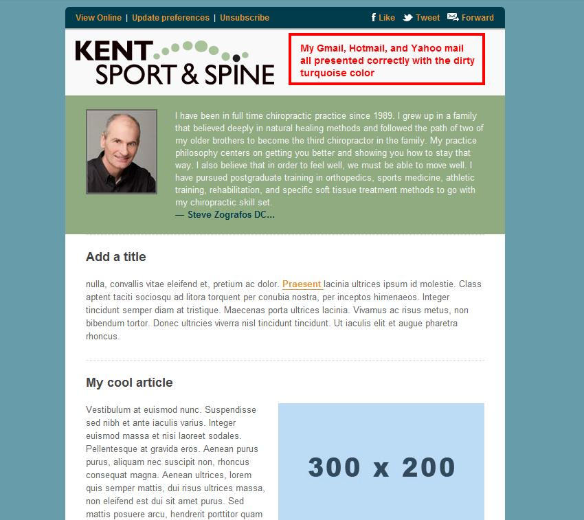 http://webbdemo.com/images/Testing-KSS_proper-presentation-shows-in-mail.png